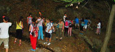 Kedvezményes táborozás a Nyírmedpusztai Lurkóheverdében!